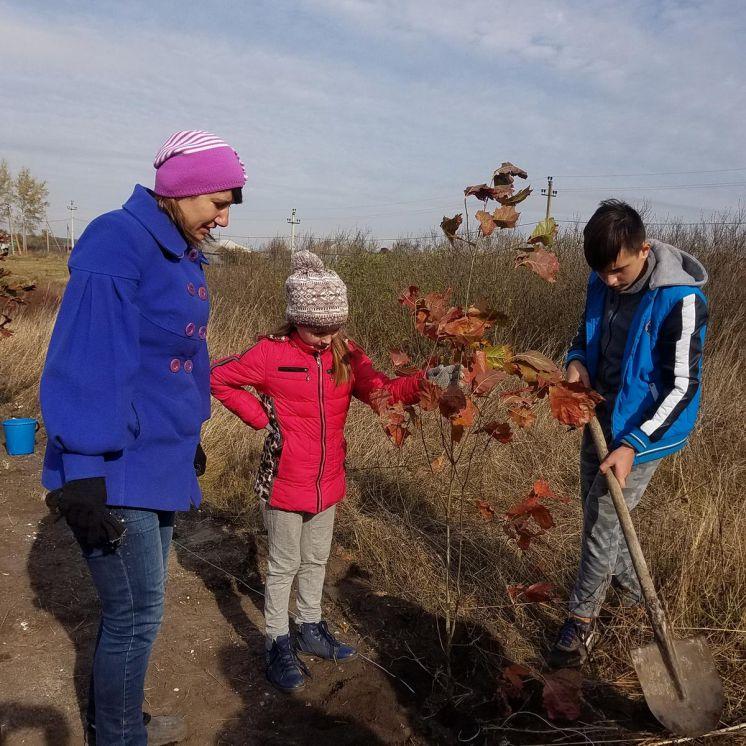 Посадка «Сада Детства» на территории храма святого Митрофана Воронежского
